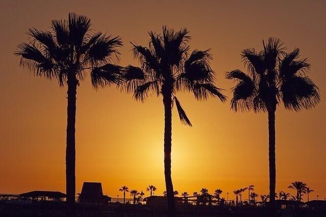 Realice su mudanza a Gran Canaria con Mudinmar