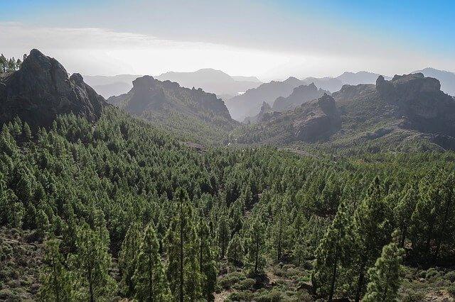 Importación de efectos personales a Gran Canaria y documentación necesaria