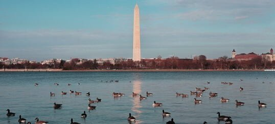 Find accommodations in Washington D.C.