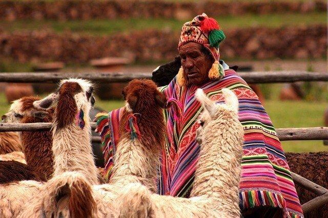 Mudanzas a Perú desde Argentina