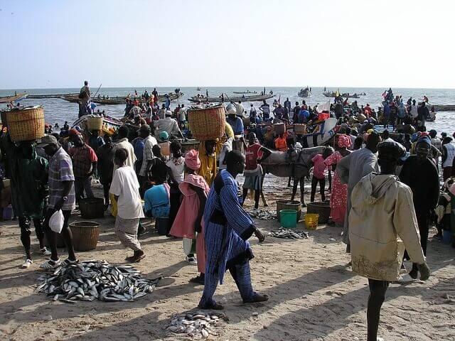 Información de Interés en su Mudanza Internacional a Senegal