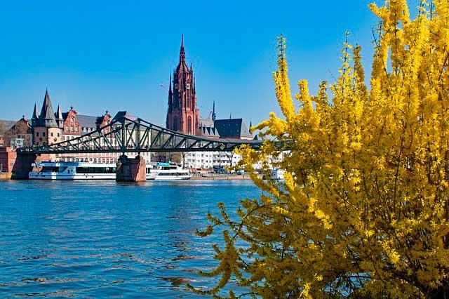 Servicios complementarios para mudanzas a Frankfurt