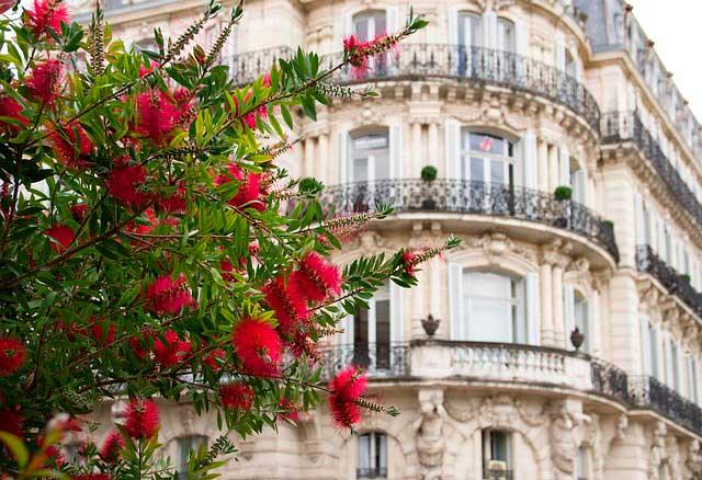Mudanzas a Montpellier