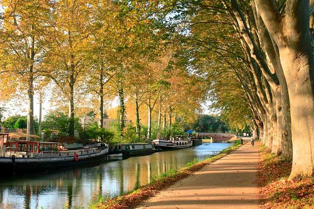 Servicios adicionales de mudanza a Toulouse