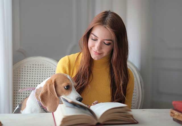 ¿Qué documentos necesito para enviar a mi mascota?