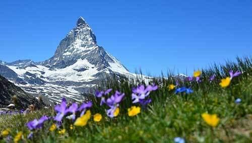 Servicios adicionales de mudanza a Suiza